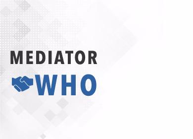 mediator who